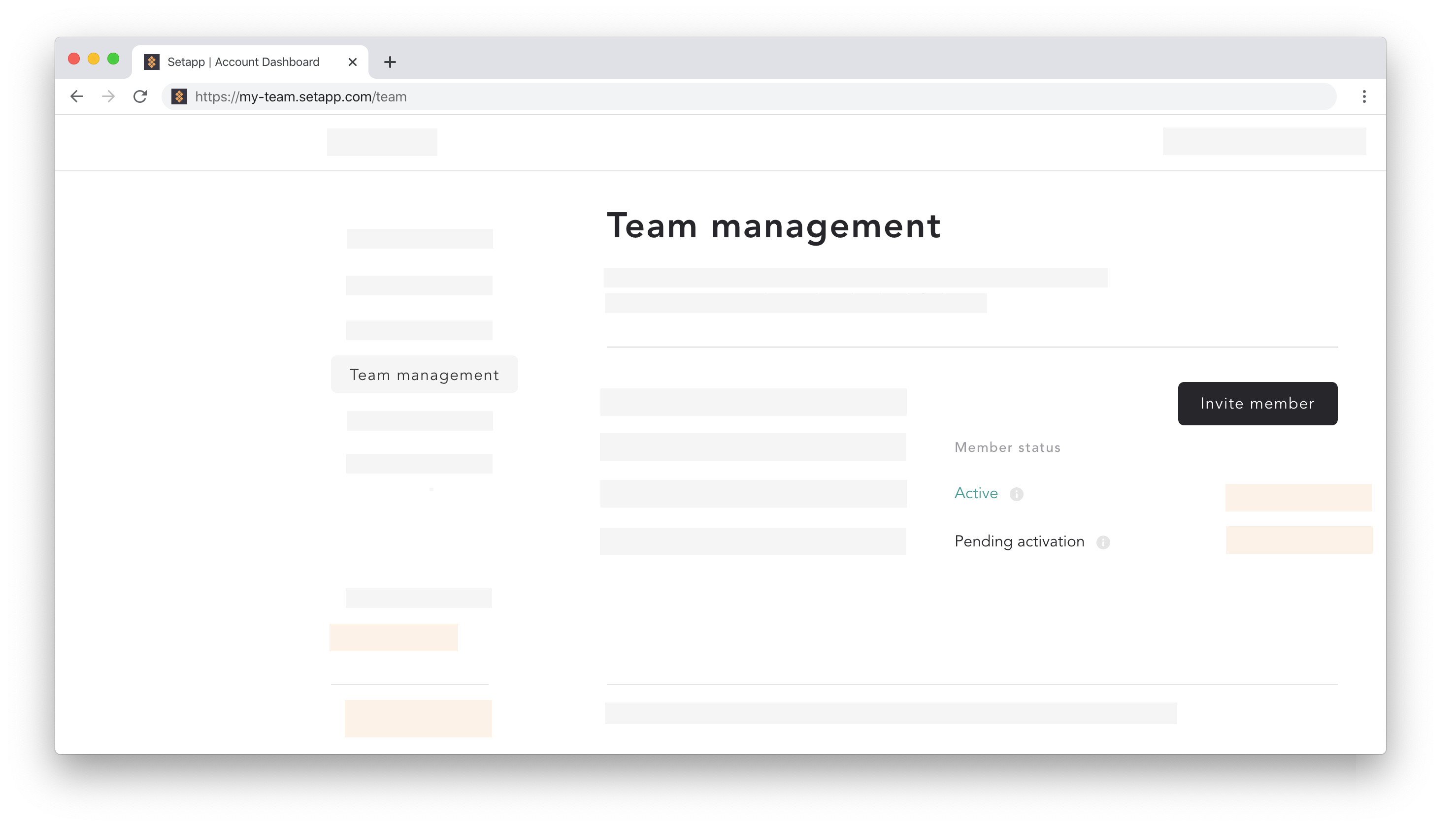 team-management-invite-member.png